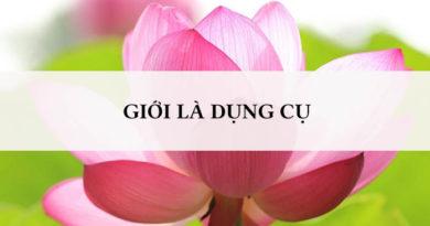 Giữ giới là điều quan trọng nhưng đó là chưa đủ - Thiền sư Ajahn Chahn