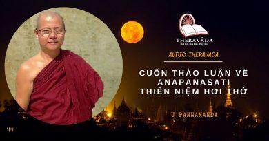 AUDIOS CUỐN THẢO LUẬN VỀ ANAPANASATI THIỀN NIỆM HƠI THỞ - U PANNANANDA