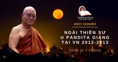 AUDIOS NGÀI THIỀN SƯ U PANDITA GIẢNG TẠI VN 2012-2013