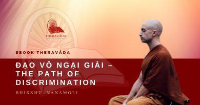 ĐẠO VÔ NGẠI GIẢI - THE PATH OF DISCRIMINATION - NANAMOLI BHIKKHU