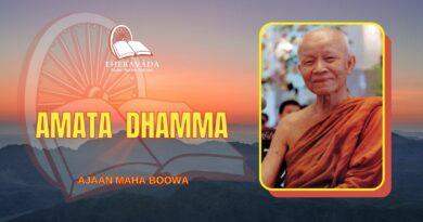 AMATA DHAMMA - AJAAN MAHA BOOWA