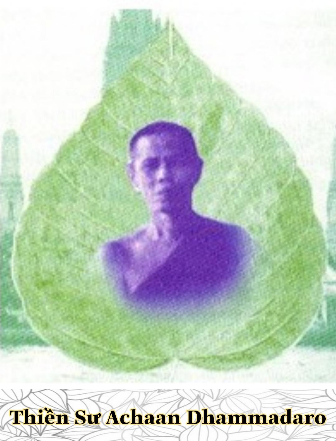 Thiền sư Achaan Dhammadaro 1