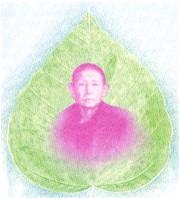 Thiền sư Taungpulu Sayadaw
