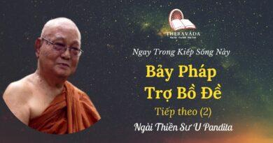 Bay-phap-tro-bo-de-2-Ngay-trong-kiep-song-nay-U-Pandita-Theravada
