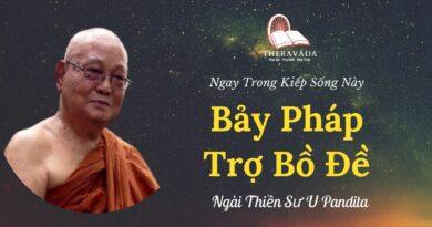 Bay-phap-tro-bo-de-Ngay-trong-kiep-song-nay-U-Pandita-Theravada