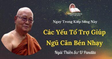 Cac-yeu-to-tro-giup-ngu-can-ben-nhay-Ngay-trong-kiep-song-nay-U-Pandita-Theravada