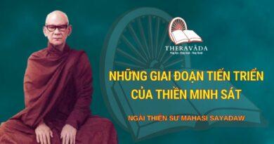 Những Giai Đoạn Tiến Triển Của Thiền Minh Sát - Ngài Thiền Sư Mahāsī