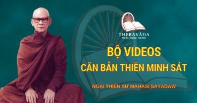 Bộ VideosCăn Bản Thiền Minh Sát - Ngài Thiền Sư Mahāsī