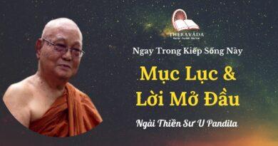 Muc-luc-va-loi-mo-dau-Ngay-trong-kiep-song-nay-U-Pandita-Theravada