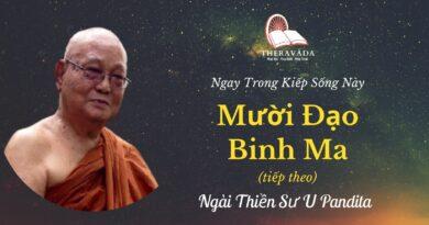 Muoi-dao-binh-ma-2-Ngay-trong-kiep-song-nay-U-Pandita-Theravada