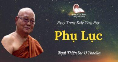 Phu-luc-Ngay-trong-kiep-song-nay-U-Pandita-Theravada