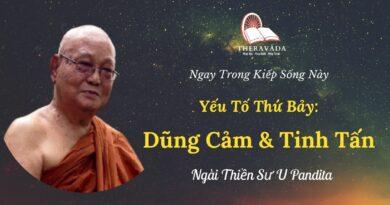 Yeu-to-thu-bay-dung-cam-va-tinh-tan-Ngay-trong-kiep-song-nay-U-Pandita-Theravada