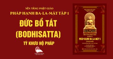 Videos [Pháp Hạnh Ba-La-Mật] 03. Đức Bồ Tát (Bodhisatta) - Tỳ Khưu Hộ Pháp