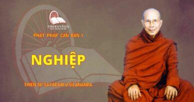 Phật Pháp Căn Bản Phần I - Nghiệp