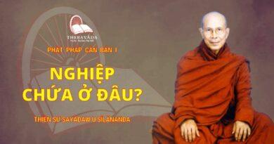Phật Pháp Căn Bản Phần I - Nghiệp Chứa Ở Đâu?