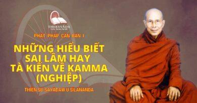 Phật Pháp Căn Bản Phần I - Những Hiểu Biết Sai Lầm Hay Tà Kiến Về Kamma (Nghiệp)