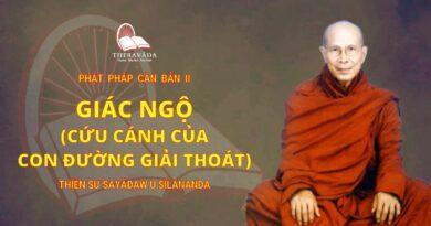 Phật Pháp Căn Bản II - Giác Ngộ (Cứu Cánh Của Con Đường Giải Thoát)
