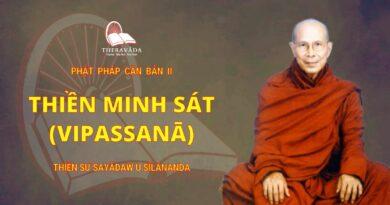Phật Pháp Căn Bản II - Thiền Minh Sát (vipassanā)