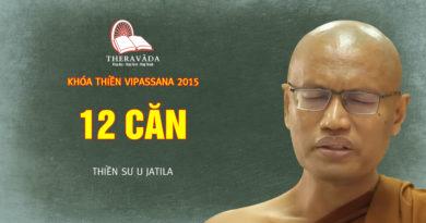 Videos 11. 12 Căn | Thiền Sư U Jatila - Khóa Thiền Năm 2015