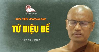 Videos 13. Tứ Diệu Đế | Thiền Sư U Jatila - Khóa Thiền Năm 2015