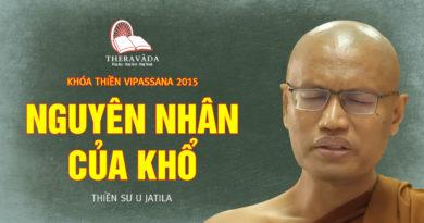 Videos 14. Nguyên Nhân Của Khổ | Thiền Sư U Jatila - Khóa Thiền Năm 2015
