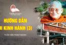 VIDEOS HOW TO DO WALKING MEDITATION 3 | PAṆḌITARĀMA FOREST MEDITATION CENTER (ENG)