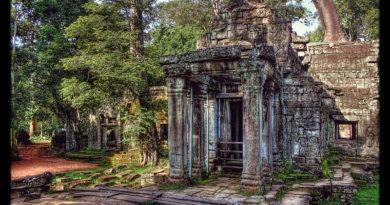Siem Reap K - Ta Prohm 29