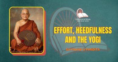EFFORT, HEEDFULNESS AND THE YOGI - SAYADAW U PANDITA