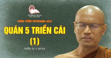 Videos 8. Quán 5 Triền Cái (1) | Thiền Sư U Jatila - Khóa Thiền Năm 2015