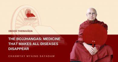 THE BOJJHANGAS: MEDICINE THAT MAKES ALL DISEASES DISAPPEAR - CHANMYAY MYAING SAYADAW