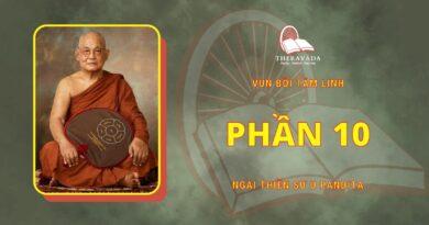Vun Bồi Tâm Linh - Phần 10