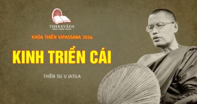 Videos 1. Kinh Triền Cái | Thiền Sư U Jatila - Khóa Thiền Năm 2016