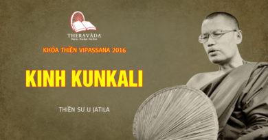 Videos 12. Kinh Kunkali | Thiền Sư U Jatila - Khóa Thiền Năm 2016