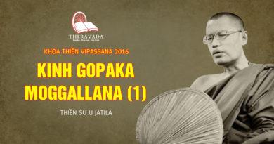 Videos 3. Kinh Gopaka Moggallana (1) | Thiền Sư U Jatila - Khóa Thiền Năm 2016