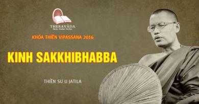 Videos 5. Kinh Sakkhibhabba | Thiền Sư U Jatila - Khóa Thiền Năm 2016