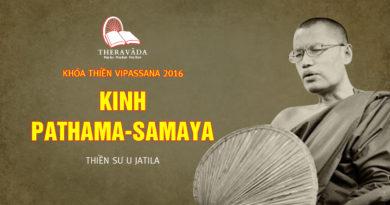 Videos 8. Kinh Pathama - Samaya | Thiền Sư U Jatila - Khóa Thiền Năm 2016
