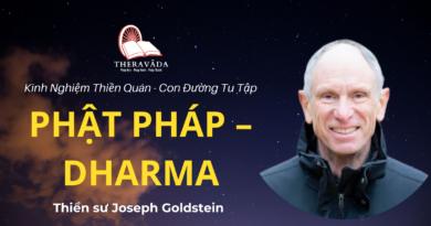 Con-duong-tu-tap-phat-phap-Dharma-Joseph-Goldstein-Theravada