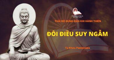 Thái Độ Đúng Đắn Khi Hành Thiền - Đôi Điều Suy Ngẫm