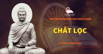 Thái Độ Đúng Đắn Khi Hành Thiền - Chắt Lọc