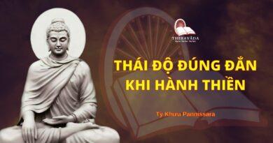 Thái Độ Đúng Đắn Khi Hành Thiền - Chánh Niệm Có Đà