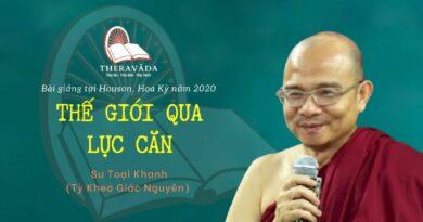 THẾ GIỚI QUA LỤC CĂN - BÀI GIẢNG SƯ TOẠI KHANH HOUSTON 2020