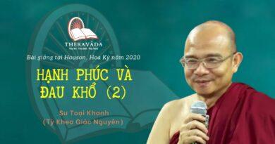 HẠNH PHÚC VÀ ĐAU KHỔ 2 - BÀI GIẢNG SƯ TOẠI KHANH HOUSTON 2020