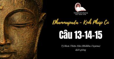 LỚP KINH PHÁP CÚ DHAMMAPADA PALI: CÂU 13-14-15