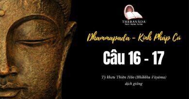 LỚP KINH PHÁP CÚ DHAMMAPADA PALI – CÂU 16-17: DHAMMIKAUPÀSAKAVATTHU - DEVADATTAVATTHU