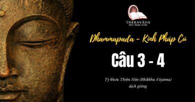 LỚP KINH PHÁP CÚ DHAMMAPADA PALI – CÂU 3&4: TISSATTHERAVATTHU – SƯ THIỆN HẢO