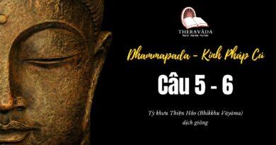 LỚP KINH PHÁP CÚ DHAMMAPADA PALI – CÂU 5&6:KALAYAKKHINIVATTHU & KOSAMBAKAVATTHU