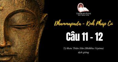 LỚP KINH PHÁP CÚ DHAMMAPADA PALI - CÂU 11 & 12:SĀRIPUTTATTHERAVATTHU