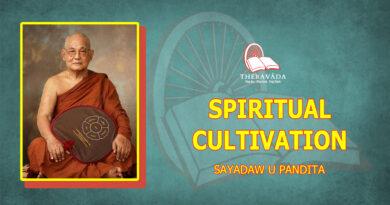SPIRITUAL CULTIVATION - SAYADAW U PANDITABHIVAMSA