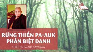 Audios Phân Biệt Danh - Thiền Sư Pa Auk Sayadaw